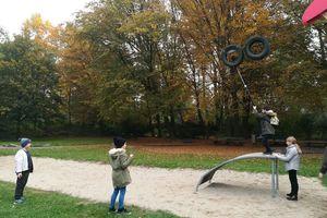 Herbstspaziergang im Hummelhofwald