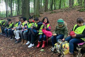Waldschule