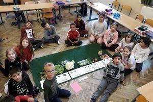 Wir lernen über Obst und Gemüse