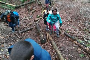 3b in der Waldschule