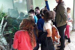 Wandertag in den Zoo Linz