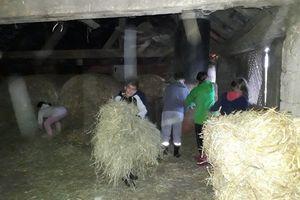Projekttage Bauernhof